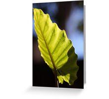 Big green leaf Greeting Card