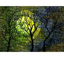 Winter Trees Yellow Green Watercolors Photographic Print