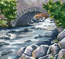 Irish Brook by Marsha Elliott