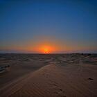 Abu Dhabi Desert Safari by Michael Powell