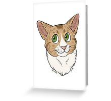 Funny the Cat - Custom Greeting Card
