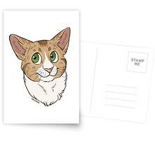 Funny the Cat - Custom Postcards