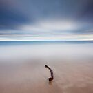 The Stick by Pascal Lee (LIPF)