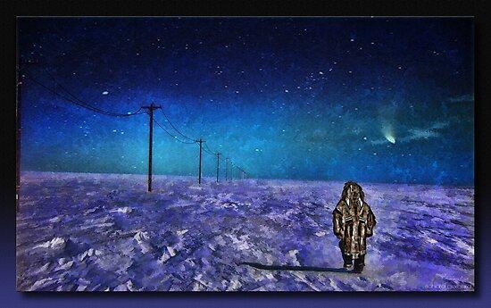 The Tundra by Richard  Gerhard
