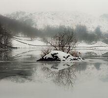 Frozen Reflections by Brian Kerr