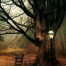 A Resting Place by Mary Ann Reilly