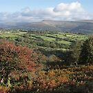 Black Mountains from Llangattock - autumn by Jane Corey