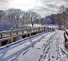 Footprints On The Bridge - HDR by Colin  Williams Photography