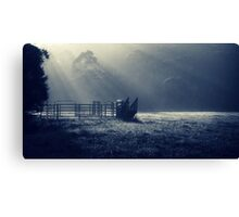 early morning rural scenery Canvas Print