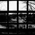 A Room with a view by Andrew Hillegass