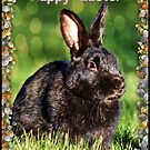 Happy Easter Card by AngieBanta