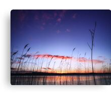 Coming Through The Rye Canvas Print