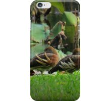 Afternoon siesta at the park. iPhone Case/Skin