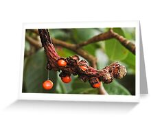 An Irish Berry Greeting Card