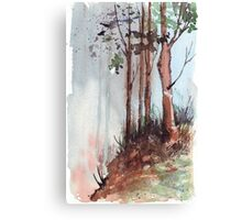 Winter is coming! Canvas Print