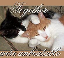 Together...we're unbeatable by Dan Wilcox