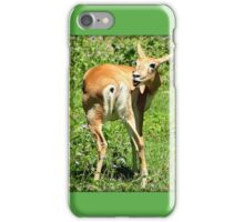 Funny Pose Of An African Steenbok Antelope iPhone Case/Skin