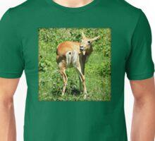 Funny Pose Of An African Steenbok Antelope Unisex T-Shirt