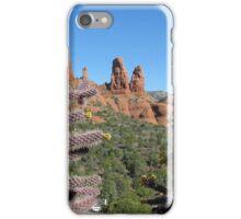 Arizona Desert iPhone Case/Skin
