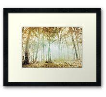 Lothlórien Framed Print