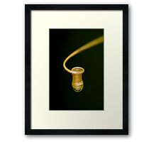 Unrevaling the nature's mysteries Framed Print