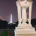 The Washington Monument by Darryl