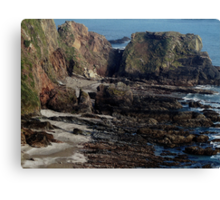 South Devon Looking Down On Westcombe Beach Low Tide March 2011 Canvas Print