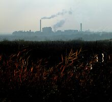Nature v. Industry #2 by Graham Kidd
