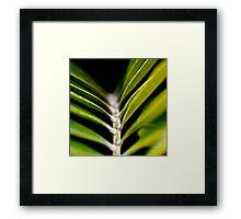 Green Canvas Framed Print