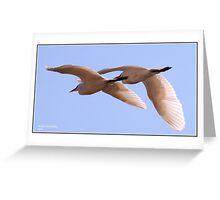 Twin flight! Greeting Card