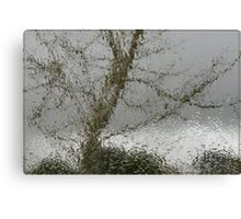 Gray Days Canvas Print