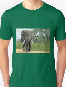 The ELEPHANT (Loxodonta Africana) T-Shirt