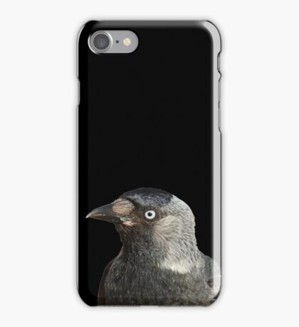 Jackdaw (Corvus monedula) Bird Portrait Vector iPhone Case/Skin