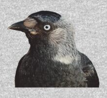 Jackdaw (Corvus monedula) Bird Portrait Vector Kids Tee