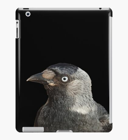 Jackdaw (Corvus monedula) Bird Portrait Vector iPad Case/Skin