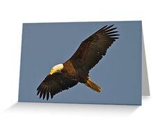 BALD EAGLE SWOOPS OVERHEAD Greeting Card