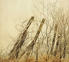 Winter Fence by KBritt