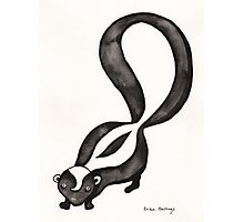 My Little Skunk Photographic Print
