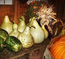 Apple Gourds by Nadya Johnson