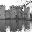 Bodiam Castle by NowhereMan