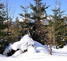 winter scene at krün, germany, by Daidalos