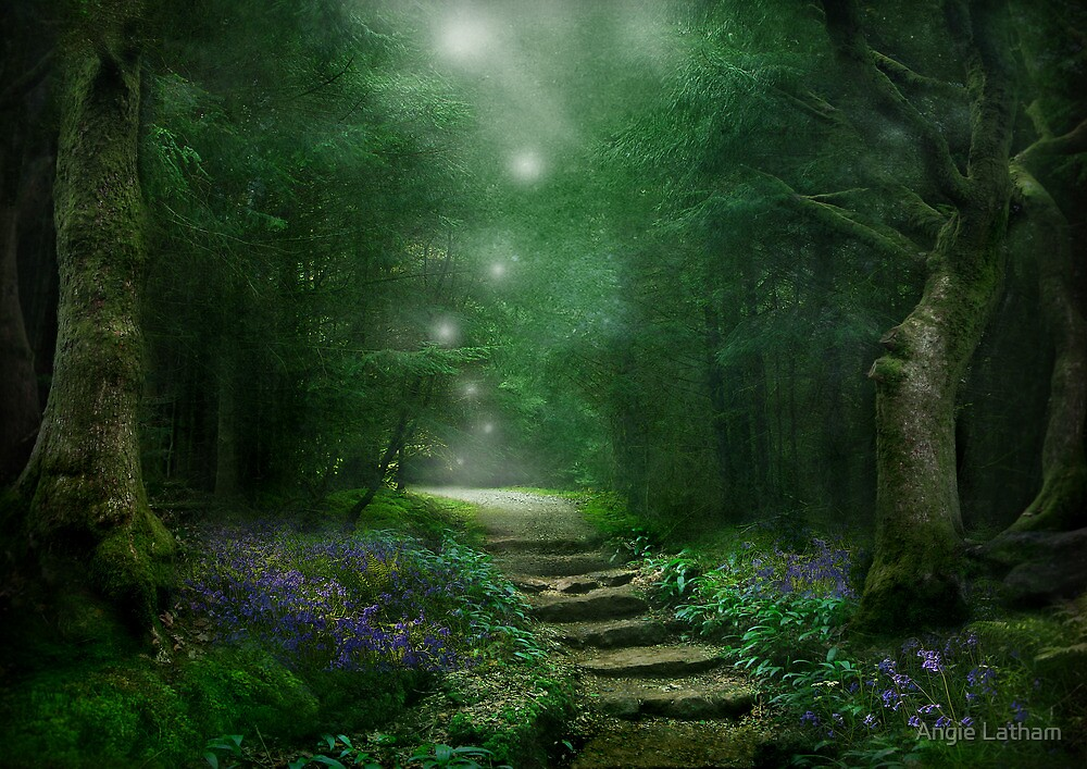Spirit of the Woods by Angie Latham