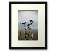 Coastal Plant Framed Print