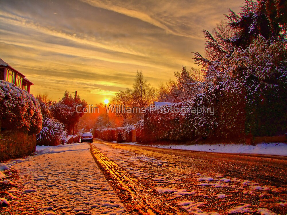 A Touch Of Frost - HDR by Colin  Williams Photography