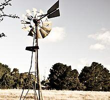 Old Windmill by Trudi Skinn