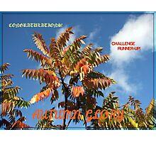 Autumn Glory Runner-up Banner Photographic Print