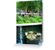 Court House Lilies Greeting Card