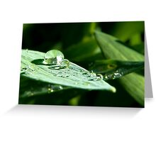 Crystal Ball Garden Greeting Card
