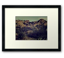 Cactus Valley Framed Print