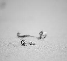Lying Objects by Magda Labuda